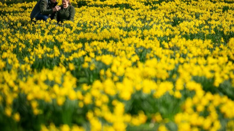 Spring is officially here – so send us photos as we look ahead to brighter days